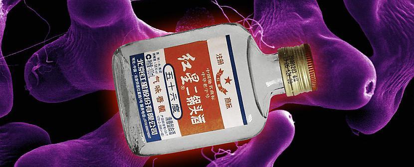 Baidžu ĶīnaĶīniescaroni... Autors: Raziels Pasaules ugunīgākie dzērieni